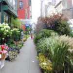 Exploring NYC's Flower District With Susan Orlean